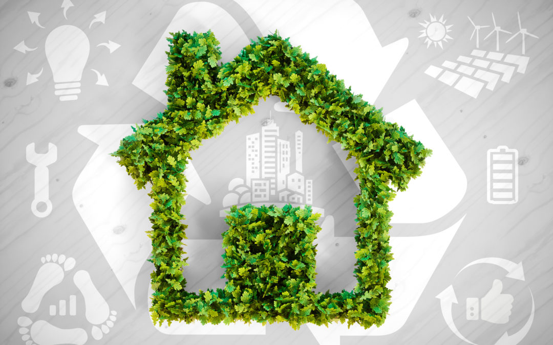 Sustainability in your home