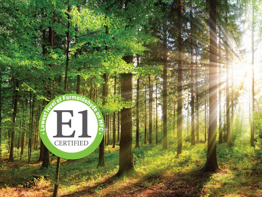 E1 accreditation: what it means for Sonae Arauco