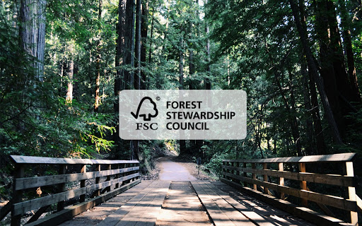 Be a responsible consumer and check for the FSC logo – here is why…